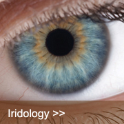 Iridology Course