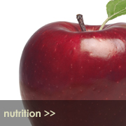 Nutrition Short Course