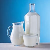 milk-dairy