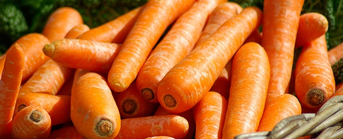 carrots-vita