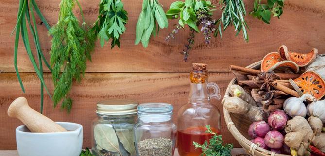 Enlightone: Herbs For Everyday Living Online