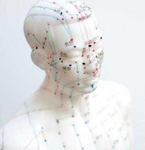 Acupuncture meridians face